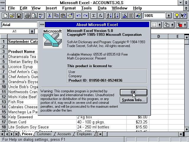 Winworld Microsoft Excel 5 X