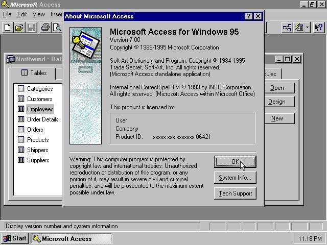 microsoft access 95 about