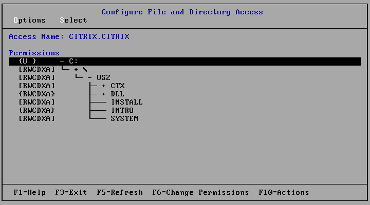 Citrix%20Multuser%20-%20Configur.png