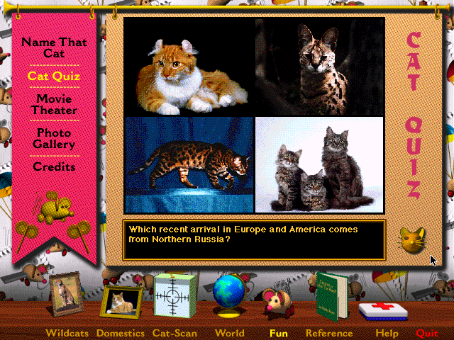 Multimedia%20Cats%20-%20Game.png